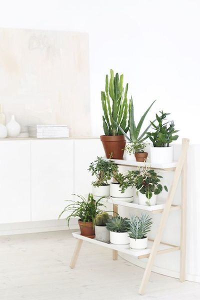 במטבח על סולם דקורציה נאה. www.ellemaison.com